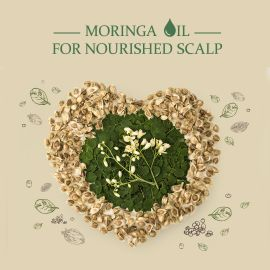 Moringa Oil - Also known as 'The Miracle Tree'